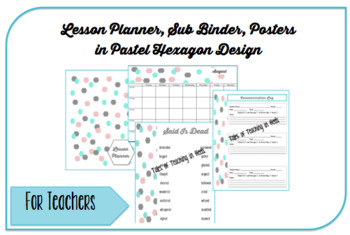 Lesson Planner, Sub Binder, Posters: Pastel Hexagon