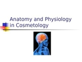 2016 Anatomy PowerPoint