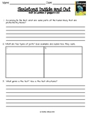 2016 Readygen 4th Grade Unit 1 Module b Lesson 2 Skeletons Inside and Out