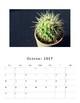 2017-2018 Cactus Calendar