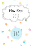 2017 Teacher Diary Template