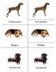 Year of the Dog ~  Dog: Montessori Three Part Cards and Six Dog Varieties