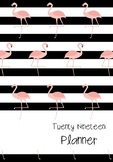 2019 Flamingo Teacher Planner