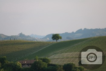 217 - LANDSCAPE - ITALY -  [By Just Photos!]