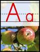 21st Century Primary Alphabet Cards