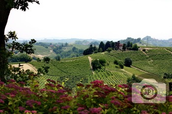 220 - LANDSCAPE - ITALY -  [By Just Photos!]