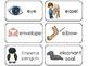 23 Letter Ee Printable Picture and Word Flashcards. Preschool-Kindergarten