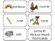 23 Letter Rr Printable Picture and Word Flashcards. Preschool-Kindergarten