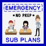 3rd Grade Sub Plans