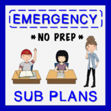 3rd Grade Sub Plans (use for Distance Learning)