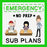5th Grade Sub Plans (use for Distance Learning)