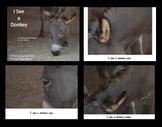 eBooks - 24 Sight Word Practice Books - Donkey Photo Journals