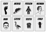 24X Irregular Plurals Flash Cards - Writing Exam E3 Functional Skills English