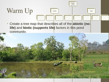 25 Daily Warm Ups to Science: Ecology, Organisms & Environments