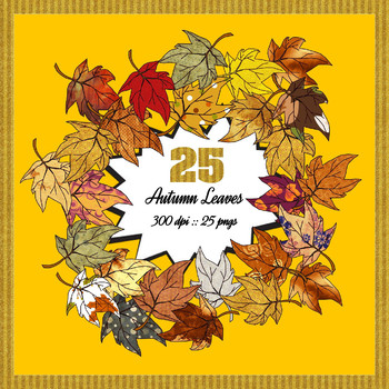 25 Gorgeous Autumn Leaves, PNGs, High Resolution, Commercial Use OK