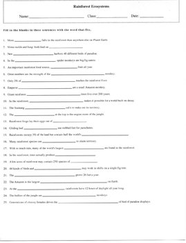 25 Question Rainforest Ecosystems Fill-in Puzzle Worksheet with Key
