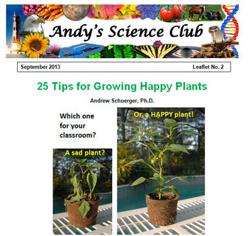 25 Tips for Growing Plants