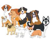 25 dog breeds clipart