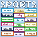 250 SPORTS FLASHCARDS TEACHING RESOURCE CLASS DISPLAY PE PHYSICAL EDUCATION