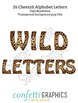 26 Cheetah Leopard Alphabet Letters Safari Camp Wild Anima