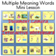 Multiple Meaning Words PowerPoint (35 slides)