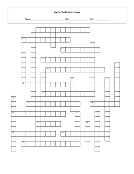 27 Insect Orders Taxonomy Classification Crossword with Key