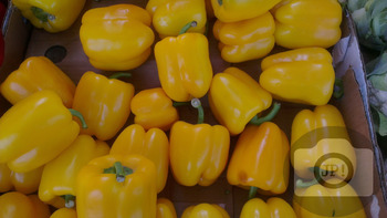 278 - PEPPERS [By Just Photos!]