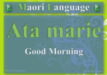 28 Maori Language Posters/Cards (Te Reo)