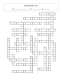 28 Order Mammal Taxonomy Classification Crossword with Key