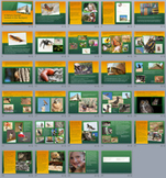29 Slide A Nature Journal: Animals PowerPoint and 4 Worksheet Set