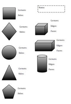 2D & 3D Shape Assessment