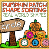 2D Shapes Center Sort with Real World Shapes Fall Activity