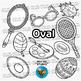 2D Shapes Clip Art: Ovals