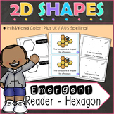 2D Shapes Hexagon Emergent Reader