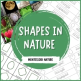 2D Shapes in Nature | Nature Curriculum in Cards | Montessori