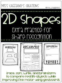 2D shape practice using fine motor and real life objects
