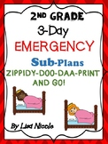 Substitute Lesson Plans for 2nd grade (3 days)