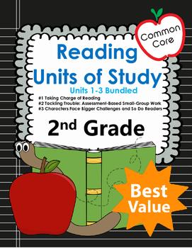 Common Core 2nd Grade Bundled Set of Reading Mini Lessons
