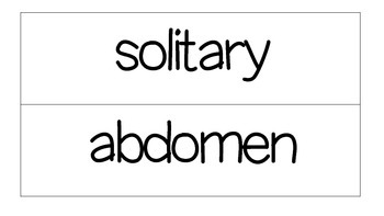 2nd Grade CKLA Domain 8 Vocabulary Word Wall Cards