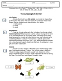 2nd Grade Common Core Insects & Life Cycles ELA Test