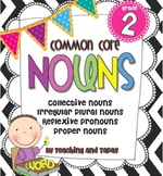 2nd Grade Common Core - NOUNS