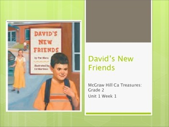 2nd Grade: David's New Friends Vocabulary for McGraw Hill Treasures