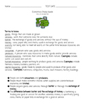 2nd Grade Economics Study Guide