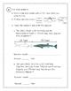 2nd Grade Everyday Math (EDM4) Unit 8 Cumulative Review