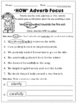 2nd Grade Language Arts and Grammar Practice Sheets Freebie (Common Core or Not)