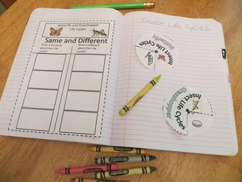 2nd Grade Interactive Science Notebook: Organisms and Environments (STAAR)