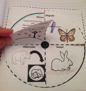 2nd Grade Interactive Science Notebook: Organisms and Environments (TEKS)