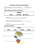 2nd Grade Plants Quiz