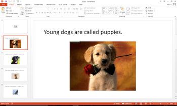 2nd Grade PowerPoint Set