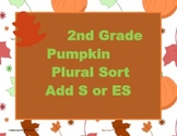 2nd Grade Pumpkin Plural Sort